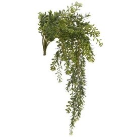 "Plant PC Vine Boxwood Green 24"" H"