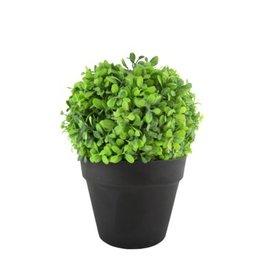 Nostalgia Plant Nostalgia Greenery Brown Pot 732-020