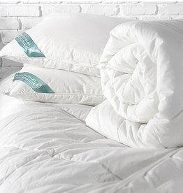 Alamode Home Pillow RJS Ultra Fresh Queen
