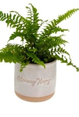 Indaba Planter Pot Indaba Blooming Happy  3-9310