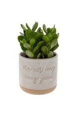 Indaba Planter Pot Indaba It's Not Easy 3-9309