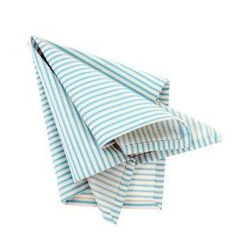 Indaba Napkin Indaba Blue Ticking S/4 4-9362
