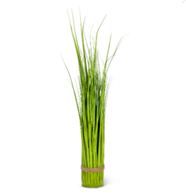 Plant Abbott Tall Grass Bundle 27-SAVANNAH-016