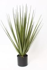 "Plant CJ Wild Grass Bush In Pot 22"" 5488-GM4372-00"
