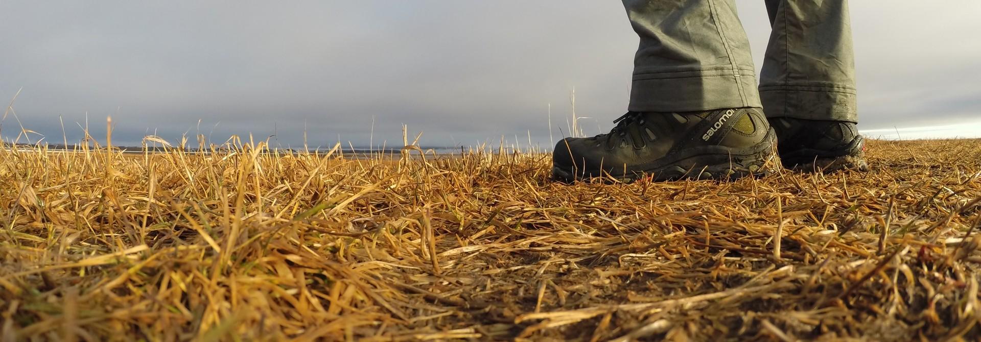 Men's Hiking Footwear