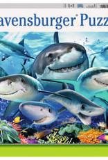 Ravensburger 300pc XXL puzzle Smiling Sharks