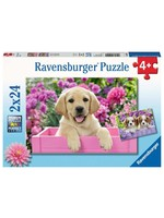 Ravensburger 2x24pc puzzle Me and my Pal