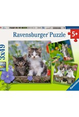 Ravensburger 3x49pc puzzle Tiger Kittens