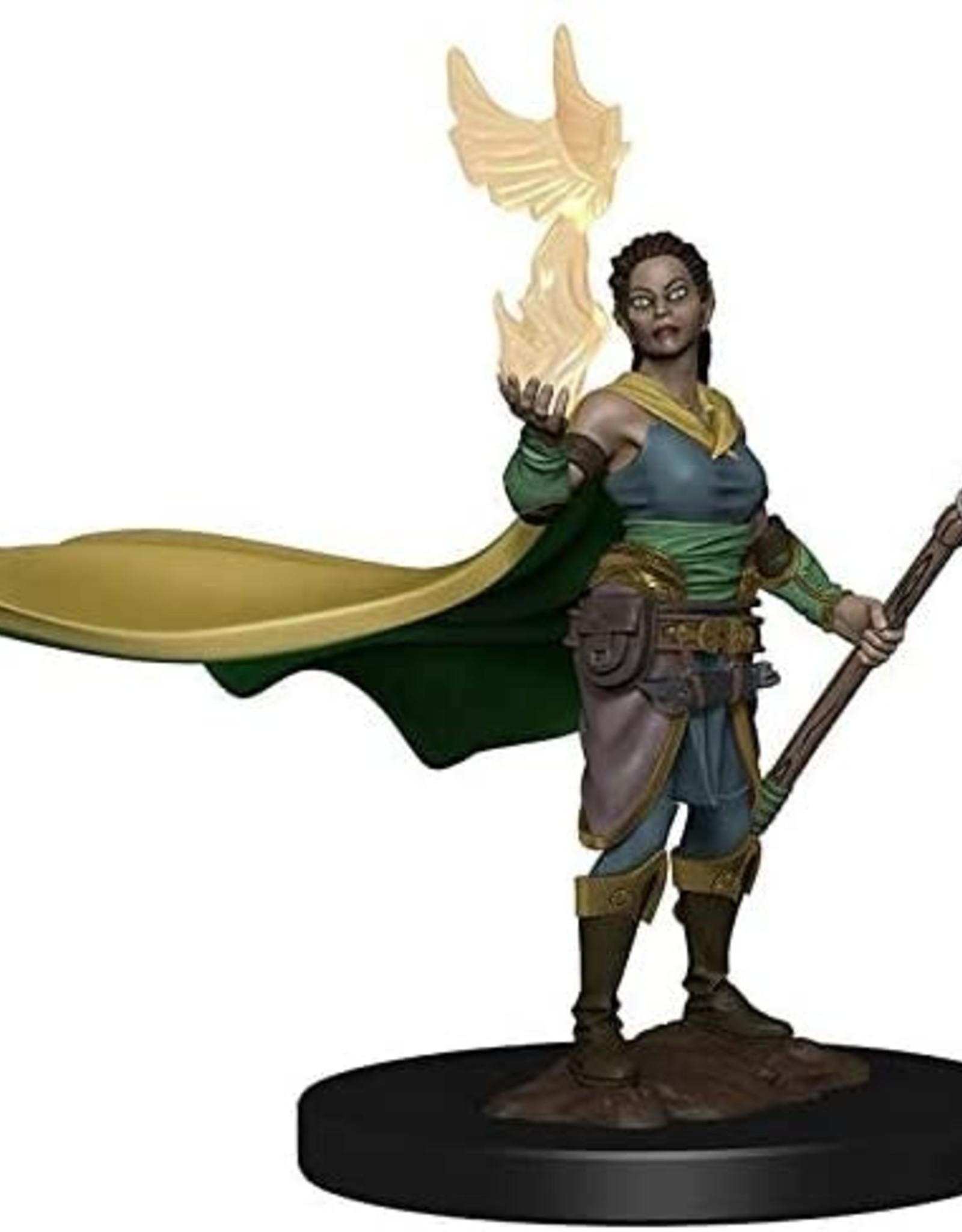 WizKids D&D Icons of the Realms: Premium Figures: Elf Female Druid
