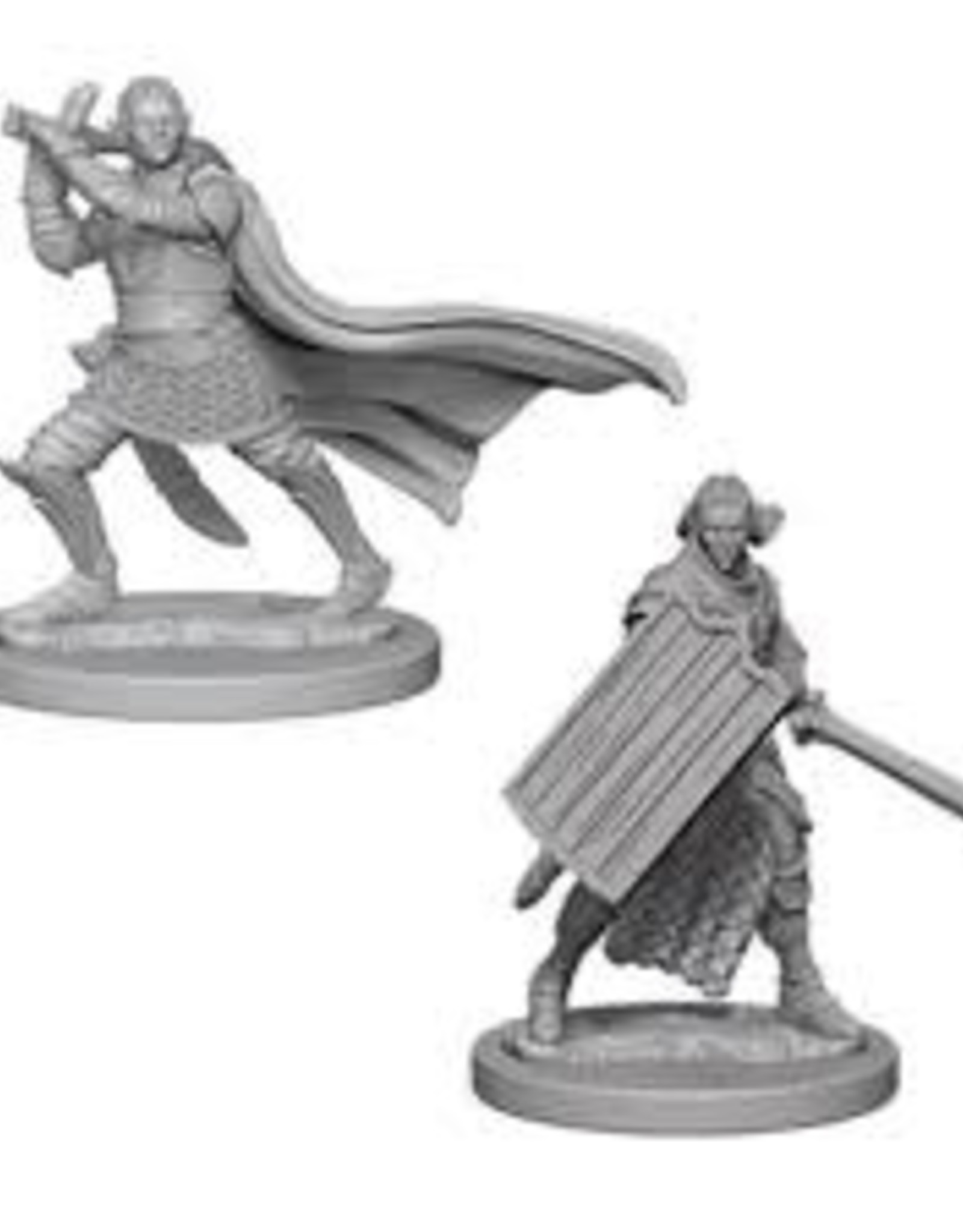WizKids Deep Cuts Elf Paladin Male