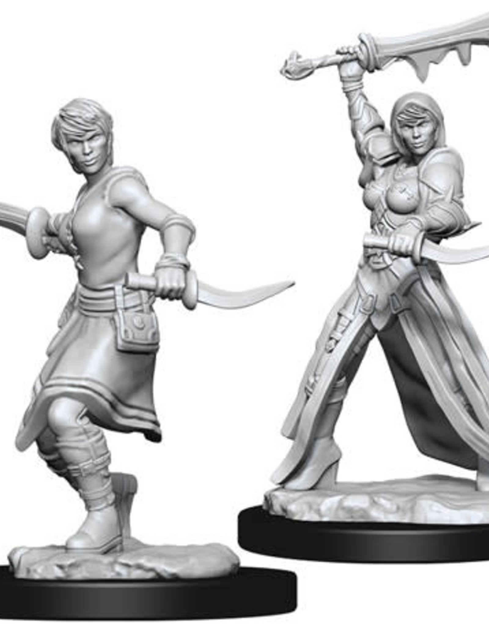 WizKids D&D Nolzur Human Rogue (She/Her/They/Them)