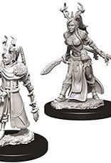 WizKids D&D Nolzur Human Druid (She/Her/They/Them)(W9)