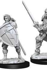 WizKids D&D Nolzur Human Fighter  (He/Him/They/Them)