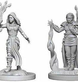 WizKids D&D Nolzur Human Druid (She/Her/They/Them)(W2)