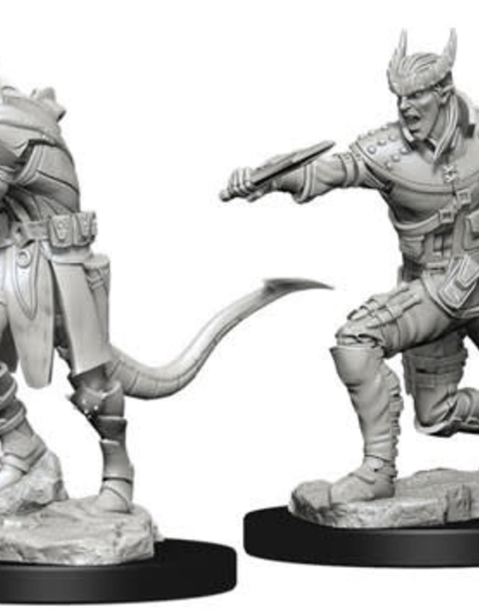 WizKids D&D Nolzur Tiefling Rogue  (He/Him/They/Them)