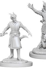 WizKids D&D Nolzur Tiefling Warlock  (He/Him/They/Them)