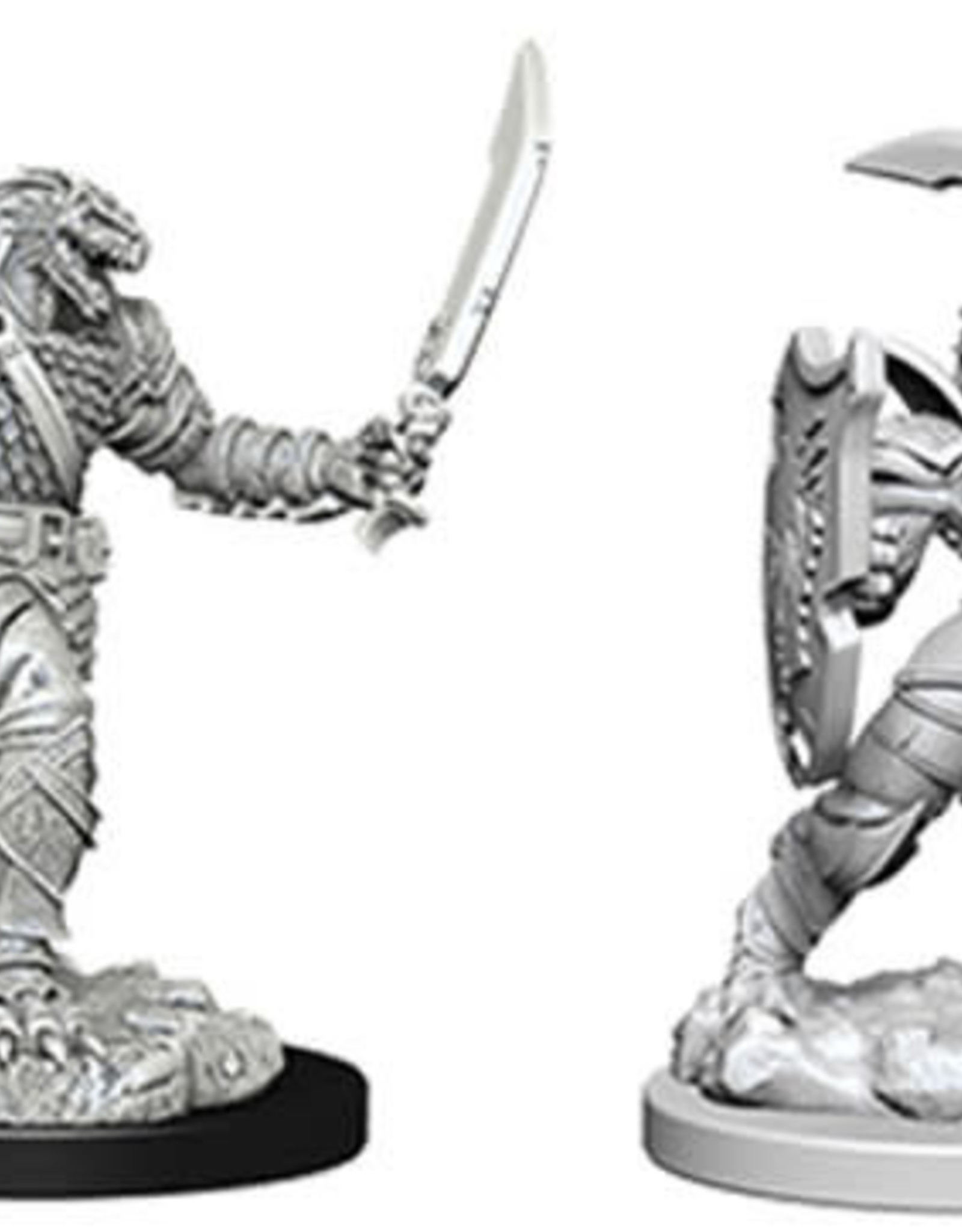 WizKids D&D Nolzur Dragonborn Paladin (She/Her/They/Them)