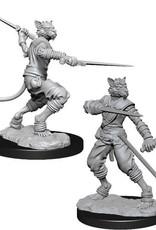 WizKids D&D Nolzur Tabaxi Rogue  (He/Him/They/Them)