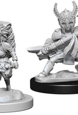 WizKids D&D Nolzur Halfling Fighter (She/Her/They/Them)