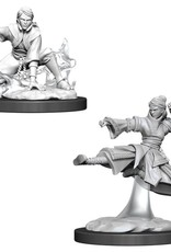 WizKids D&D Nolzur Human Monk (She/Her/They/Them)(W11)