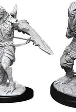 WizKids D&D Nolzur's Dragonborn Paladin