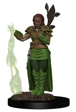 WizKids D&D Icons of the Realms Premium Figures: Human Female Druid