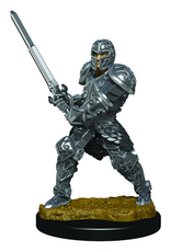 WizKids D&D Icons of the Realms Premium Figures: Male Human Fighter