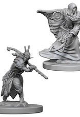 WizKids D&D Nolzur Elf Druid  (He/Him/They/Them)