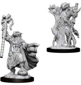 WizKids D&D Nolzur Dragonborn Sorcerer (She/Her/They/Them)