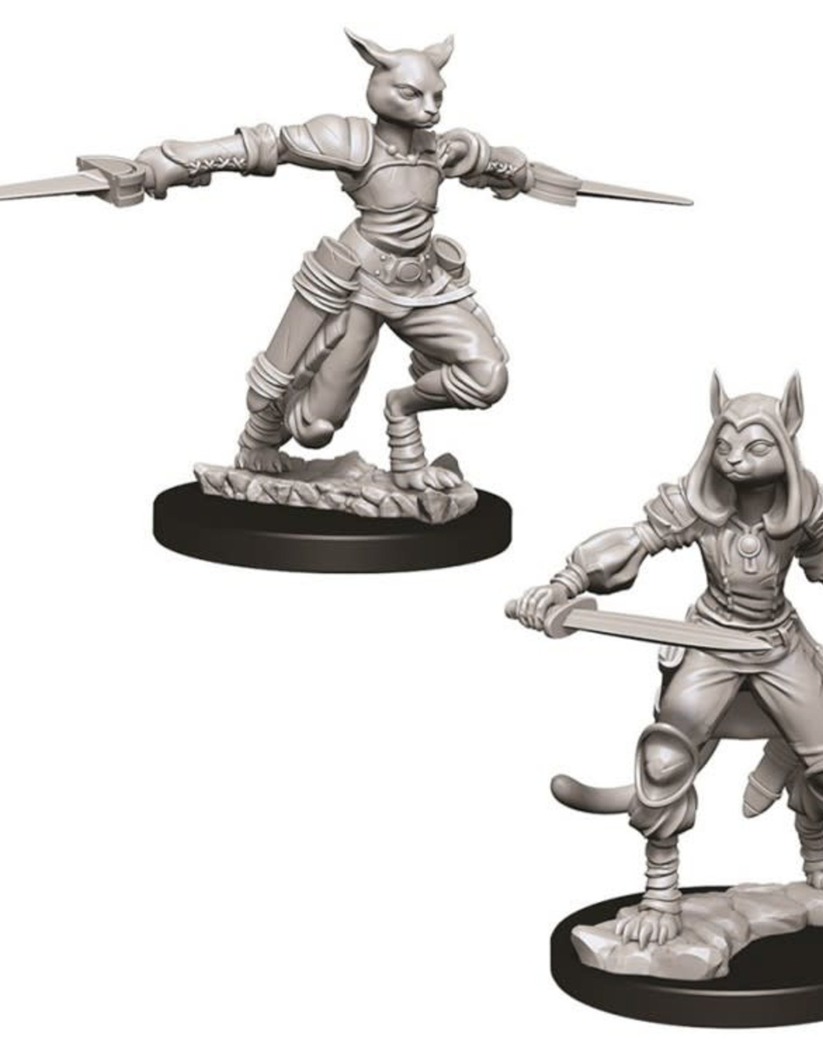 WizKids D&D Nolzur Tabaxi Rogue (She/Her/They/Them)