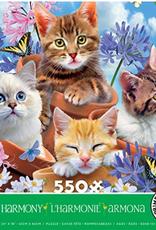 CEACO 550 pc puzzle - Harmony - Garden Wonders