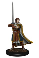 WizKids D&D Icons of the Realms Premium Figures: Human Cleric
