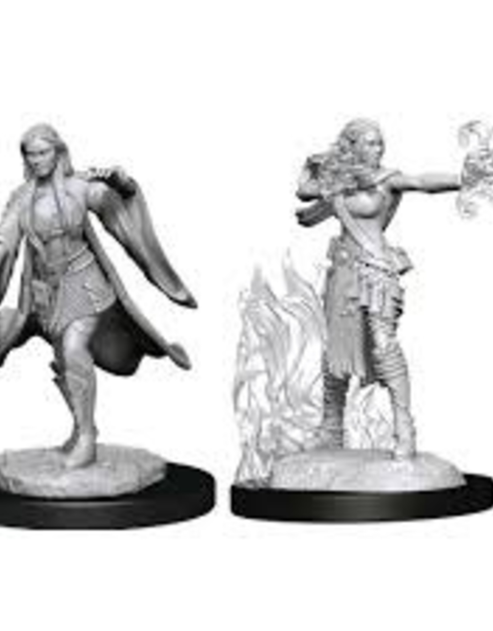 WizKids D&D Nolzur Multiclass Warlock/Sorcerer (She/Her/They/Them)