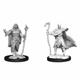 WizKids D&D Nolzur Human Druid (He/Him/They/Them) W14