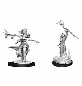 WizKids D&D Nolzur Human Druid (She/Her/They/Them) W14