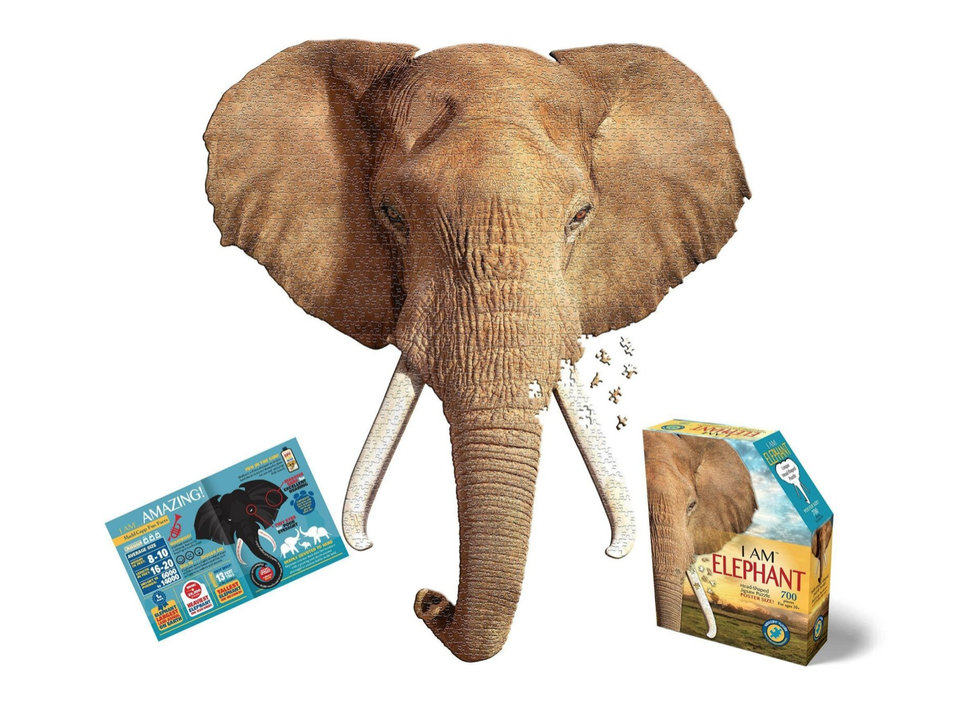 E11even I AM Elephant
