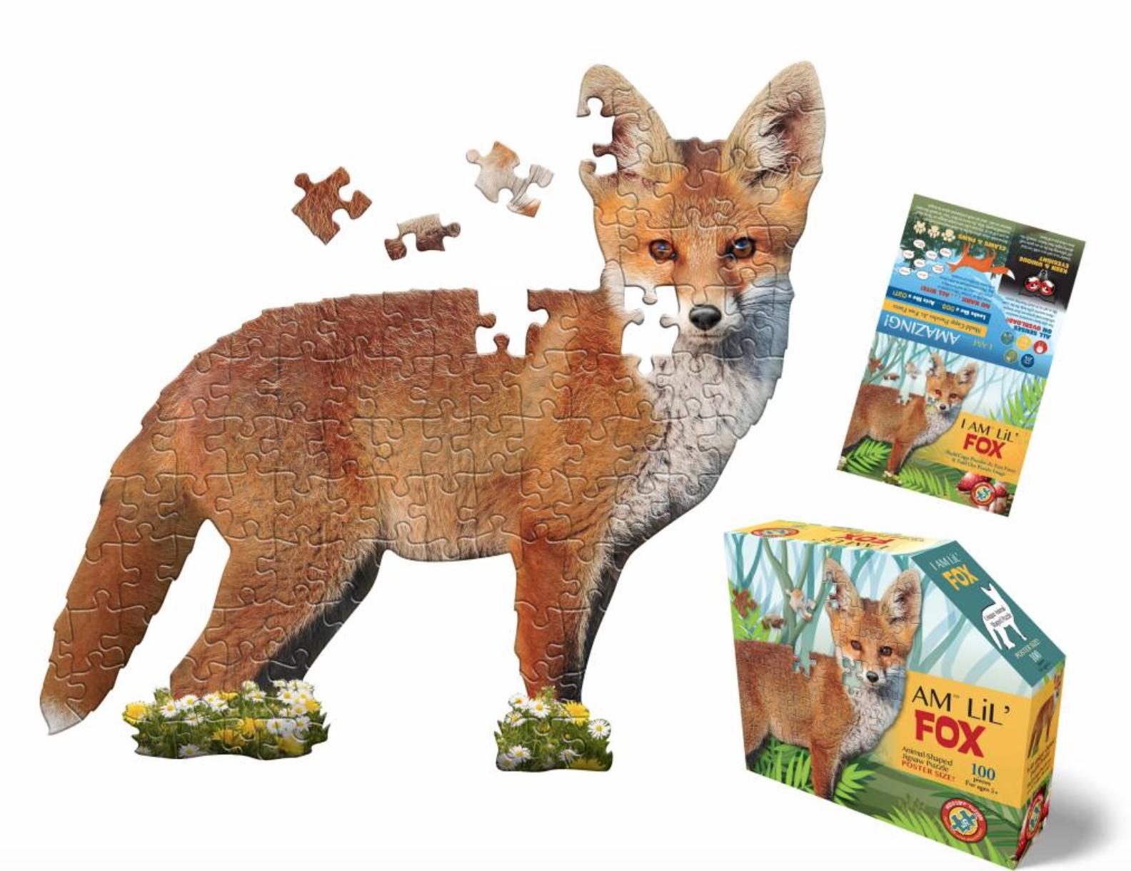 E11even I AM Lil Fox