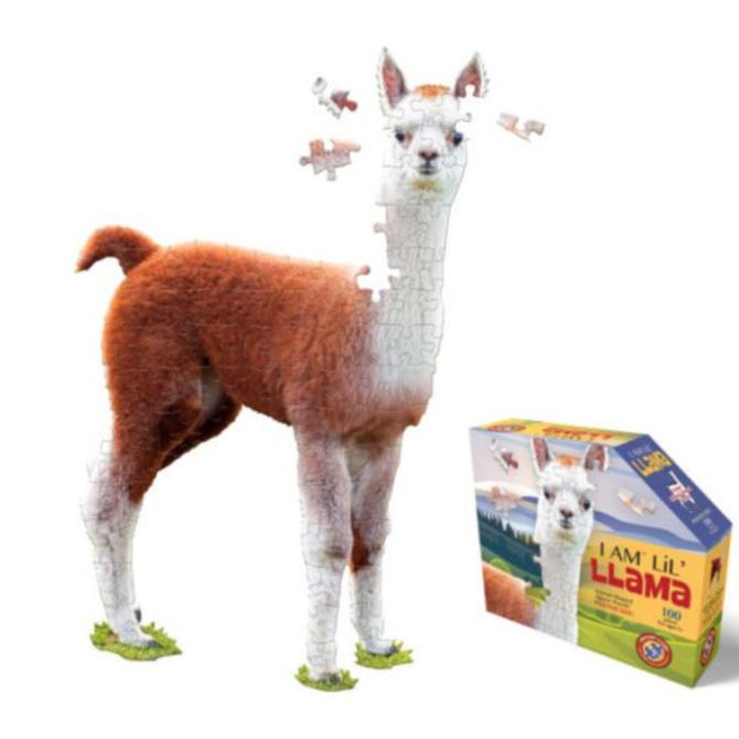E11even I Am Lil Lama