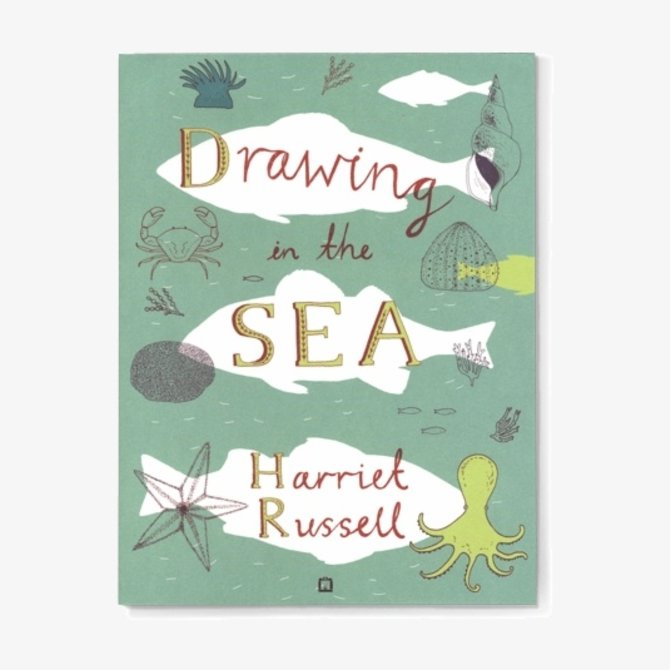 Hachette Drawing in the Sea
