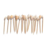 Two's Company Seashell 50-72 Pc Hors D'Oeuvre Picks in Gift Box