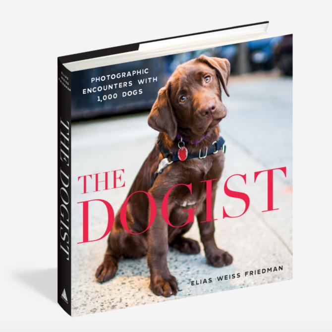 Workman Publishing Co. Dogist - 85671