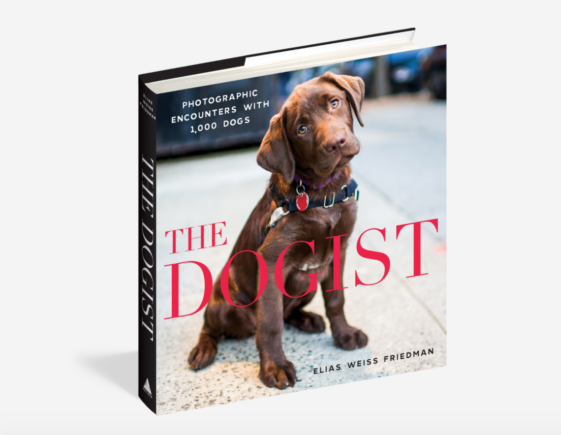 Workman Publishing Co. Dogist - 85671