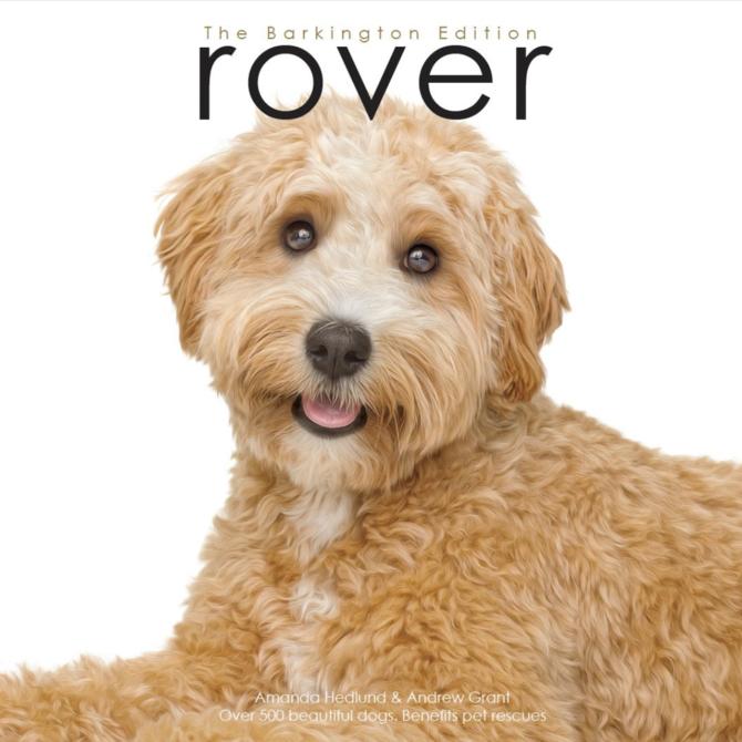Roverworks Rover Barkington Edition