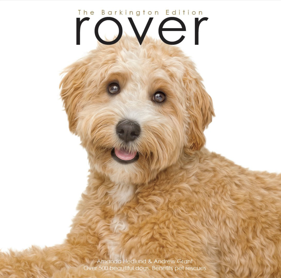 Roverworks Rover Barkington Edition