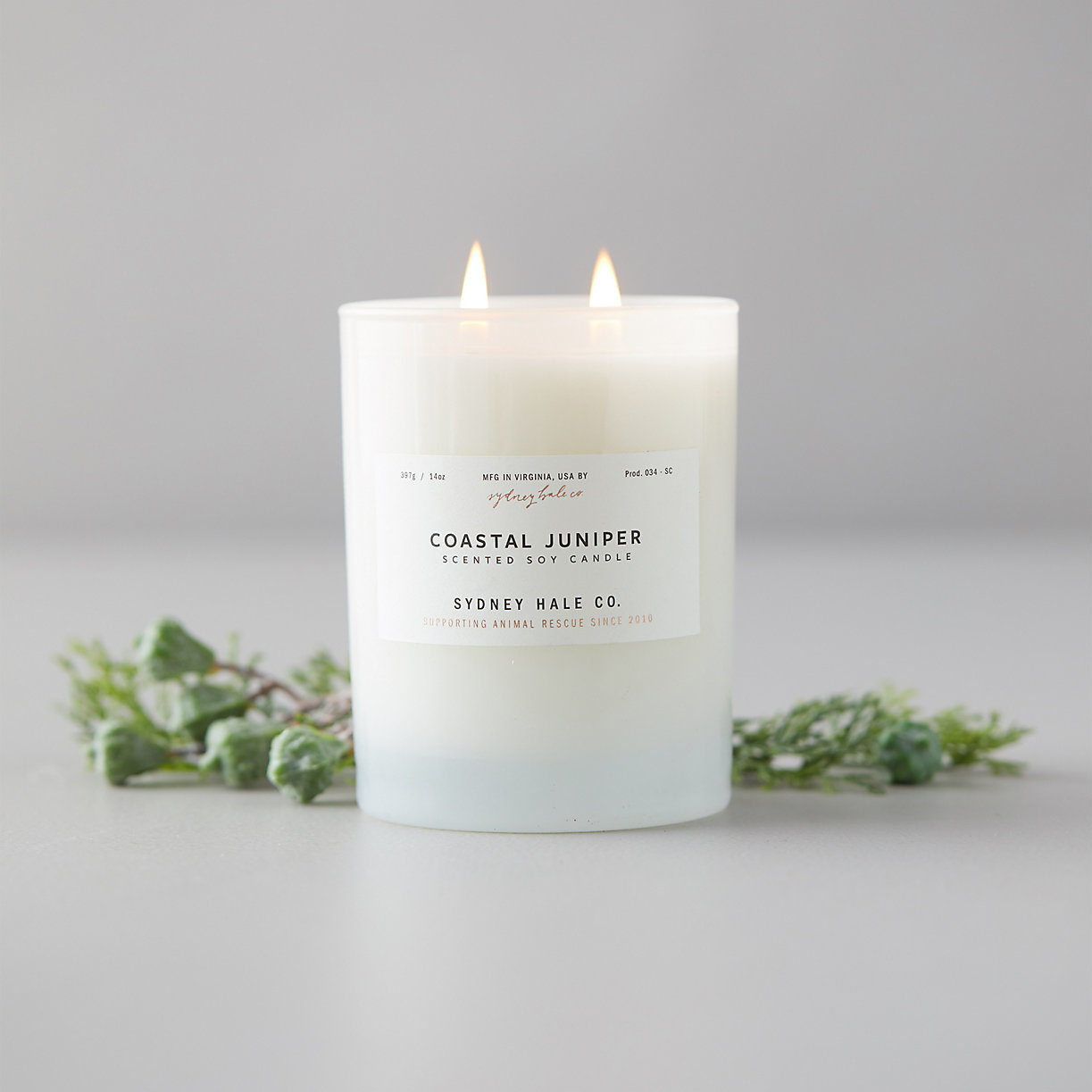 Sydney Hale Co Coastal Juniper Candle