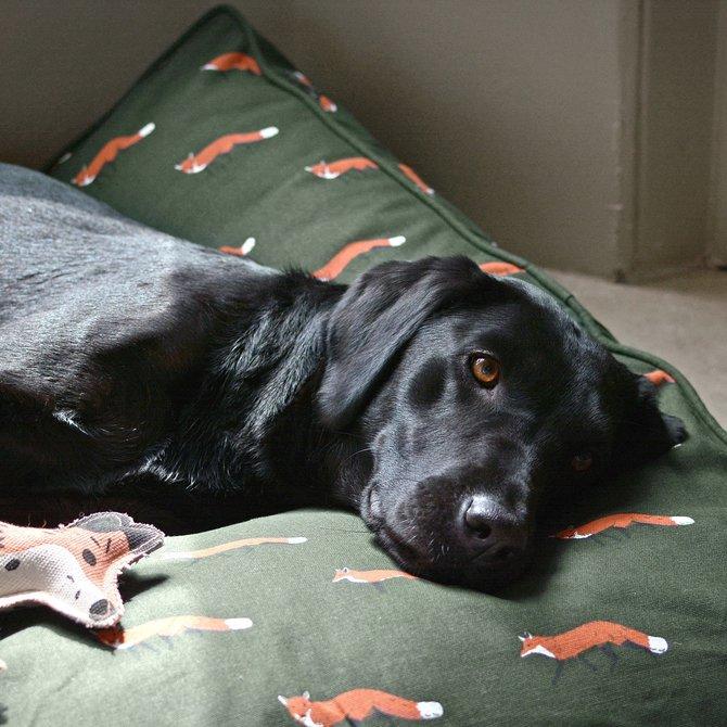 Sophie Allport Pet Mattress Fox Medium