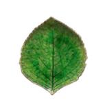 Costa Nova Alchemille Leaf Riviera - Tomate