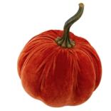 Flora Bunda Foam Pumpkin Orange