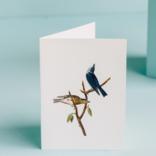 Margot Elena Tokyo Milk Blue Birds Card