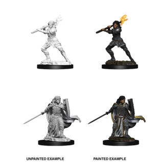 D&D Nolzurs Marvelous Unpainted Miniatures: Wave 10: Female Human Paladin